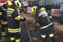 2017.10.09. Schadstoffeinsatz S2 in Yspertal (5)