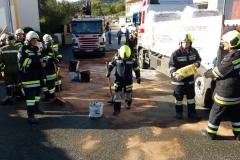 2017.10.09. Schadstoffeinsatz S2 in Yspertal (6)