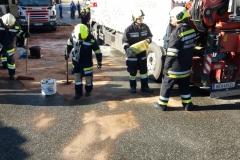 2017.10.09. Schadstoffeinsatz S2 in Yspertal (8)