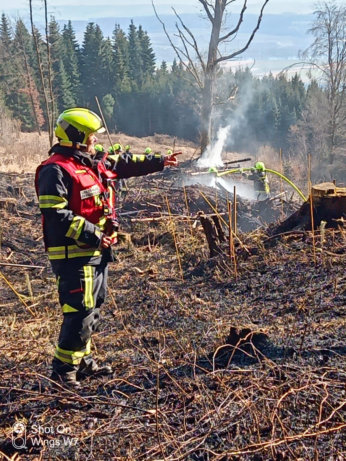 2021-03-08-Waldbrand-in-Hofamt-Priel-4