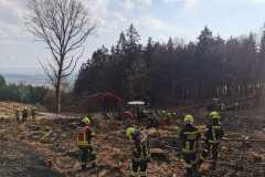 2021-03-08-Waldbrand-in-Hofamt-Priel-7