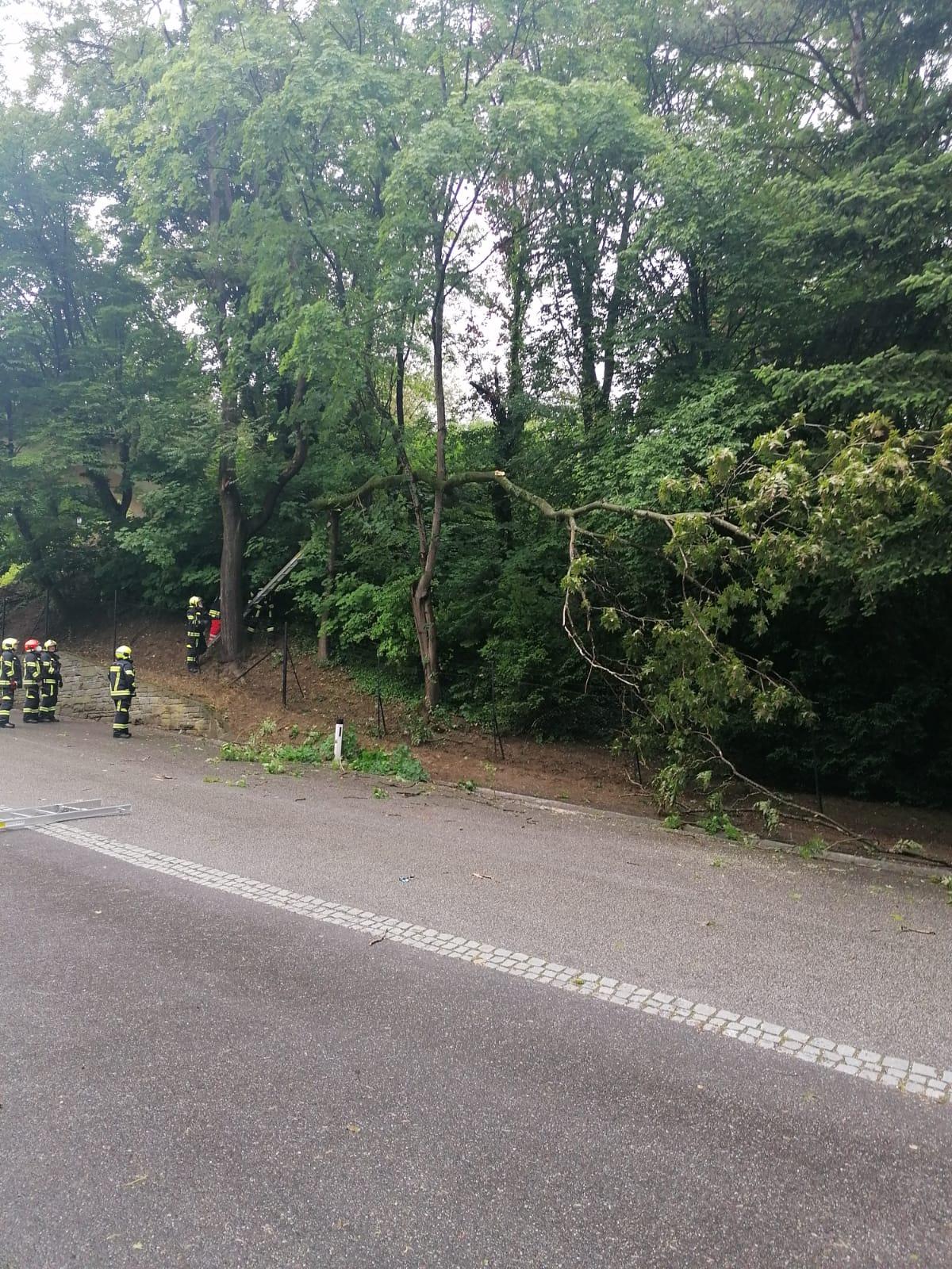 2021-06-06.-Sturmeinsatz-in-der-Schlossstrasse-1