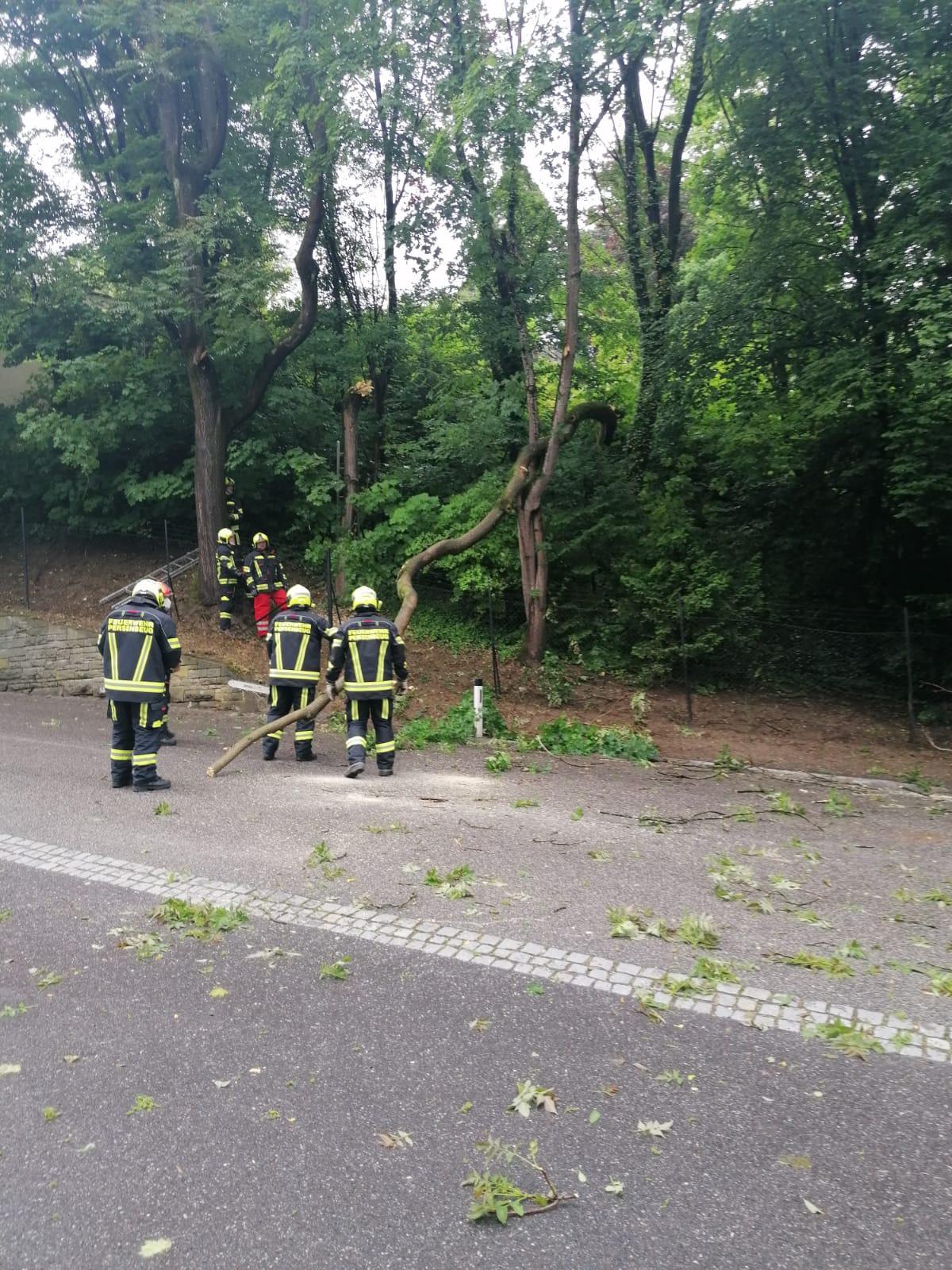 2021-06-06.-Sturmeinsatz-in-der-Schlossstrasse-5