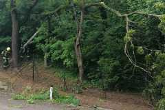 2021-06-06.-Sturmeinsatz-in-der-Schlossstrasse-2
